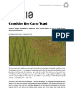 directed study - day 4 - biology - invasive species consider the cane toad