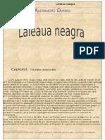 Laleaua Neagra - Al Dumas