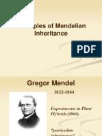 4. Mendelian Inheritance