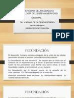 Embriología Del Snc
