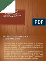 Recursos Naturales y Medioambiente