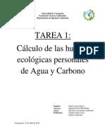 TAREA 1 Gestión y Tecnología Ambiental.pdf