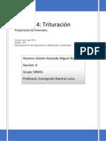 Práctica 4 - Trituración