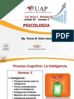 Psicologia Semana V