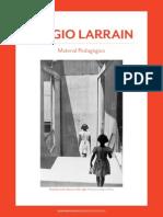 Cuartilla Pedagogica Sergio Larrain