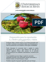 FRAMBUESA -Comercio Internacional