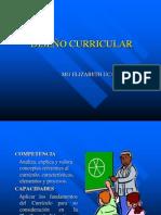 DISEÑO CURRICULAR.ppt