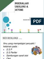PENGENALAN NEUROLOGI