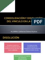 Consolidación y Disolución Del Vinculo en La Pareja