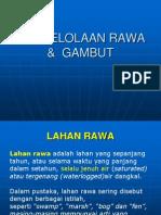 Presentasi Lahan Gambut Ku