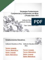 Estrategias Fortalecimiento Competencias y Componentes Con Miras a Prueba Saber 2014