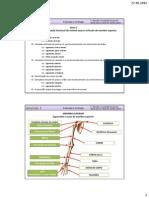 Módulo 1 Tema E - Descrição e Caraterização Funcional Do Sistema Ósseo e Articular Do Membro Superior.