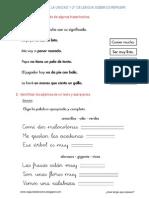 Indicacion Lengua 1-2 A