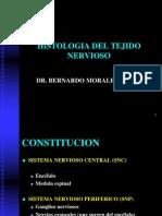 (8) Tejido Nervioso