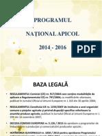 Prezentare Detaliata Pna 2014 2016