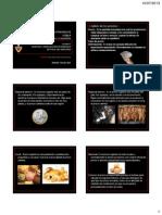 Clase 18 Estudio Del Mercado (Precios)