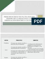 principios didacticos