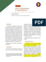 Embarazo y Metabolismo de Los Ch (1)