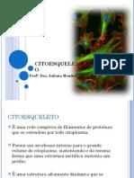 Aula 3_Citoesqueleto Celular.pdf