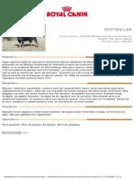12_es_encyclopedia.pdf