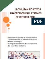 Basilos Positivos Micro