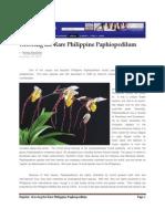 MB Article Growing the Rare Philippine Paphiopedilum