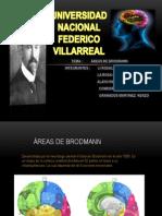 A.D.Brodman