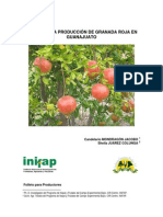 Folleto Para Productores