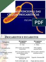 Aula 1. Anatomia Funcional Das Celulas Procarioticas Publicacao (1)