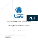 Weekly Report of Industrial Training 10