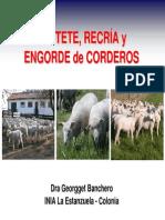 Destete, Recría y Engorde de Corderos - G Banchero - Lascano 13-10-2011
