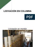 Lixiviación en Columna