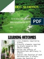 61 9macromicronutrientsinplants 120530224106 Phpapp01