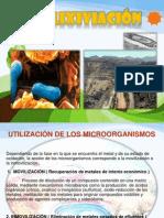 Biolixiviacion Expos