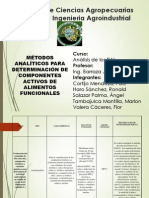 Diapositivas Final Pai