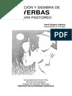 Seleccion y siembras de hierbas para pastoreo