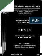 tesis-0304
