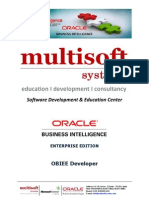 OBIEE Developer