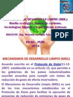 Clase 13. Mecanismos de Desarrollo Limpio