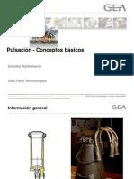 BASICS Pulsation Spa