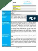 company detailed description semseo