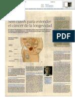 Seis claves para entender el cáncer de próstata