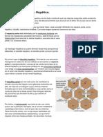 preparaelmir.com-Anatoma_Patolgica_Heptica(1)(1).pdf