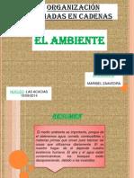 Presentacion 1 Maribel Zaavedra