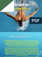 PowerPoint Nado Borboleta Completo . Apresentação