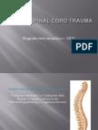 Spine Trauma Jember