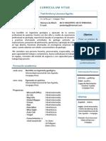 Yoel Llamoca Aguilar_Curriculum Vitae_2014