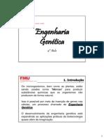 4ª Aula - Engenharia Genética