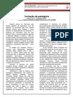 003 - Formação de Pastagens.pdf
