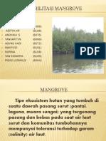 Rehabilitasi Mangrove